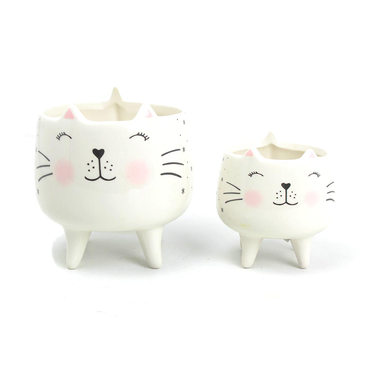 Kit Cachepot Decorativo Charmy Cat