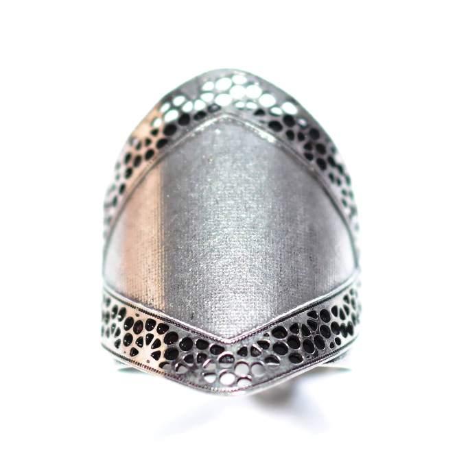 Anel Prata Shield