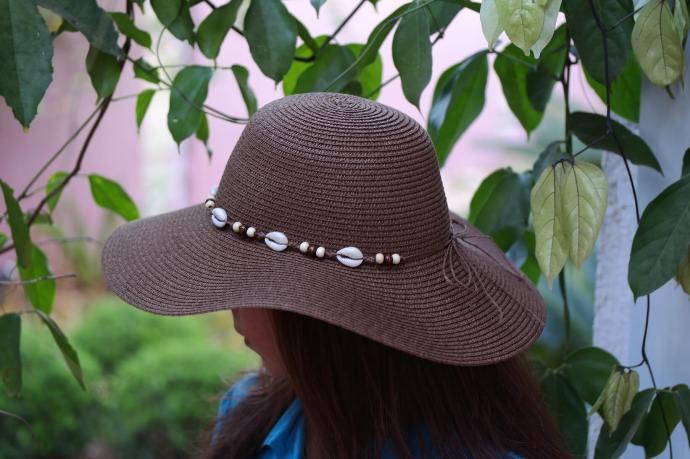 Chapéu de verão Floppy Shell