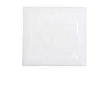 Placa Branca Pial 4x4 Cega
