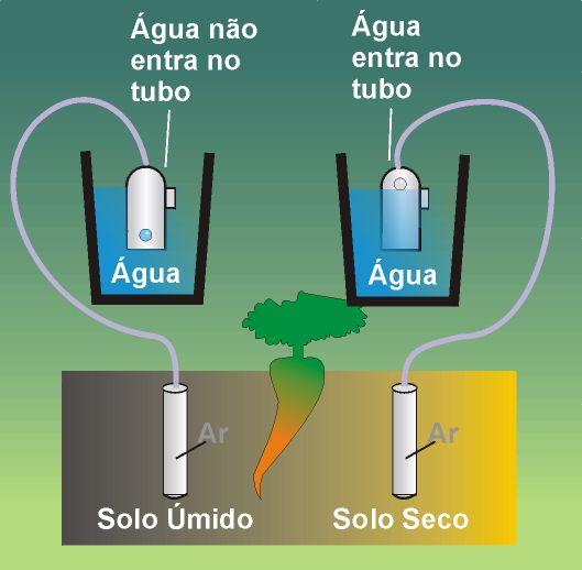 Sensor Irrigás Básico