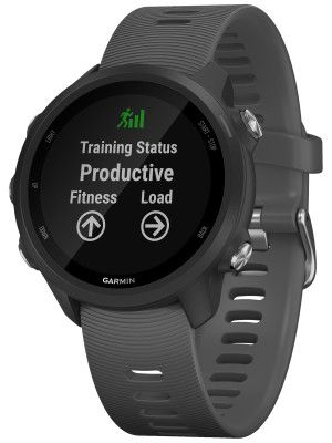 Smartwatch GPS Garmin Forerunner 245 Cinza Ardosia 010-02120-10