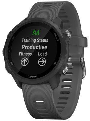 Relogio GPS Garmin Forerunner 245 Cinza Ardosia 010-02120-00