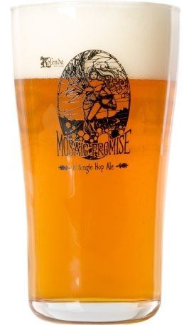Copo Founders Mosaic Pint