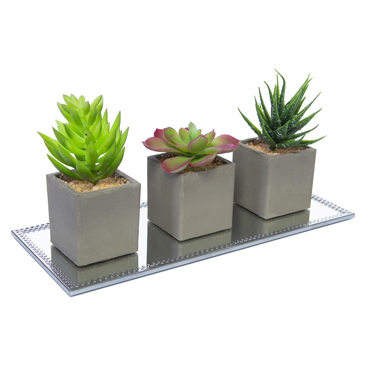 Kit com 3 Vasos Planta Permanente Suculenta + base Espelhada