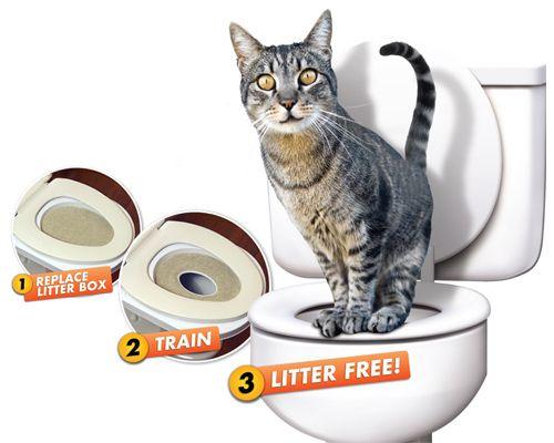 Adestrador Gato Citti Kitty Privada Vaso Sanitário Pet