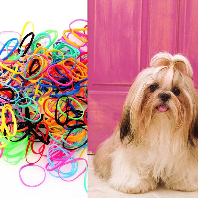 Elastico Para Laço Pet 1200 Elasticos Cachorro Cadela Dog