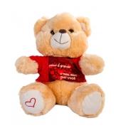 Urso Pelúcia Camisa como é Grande o meu Amor por Você 33cm - Fizzy