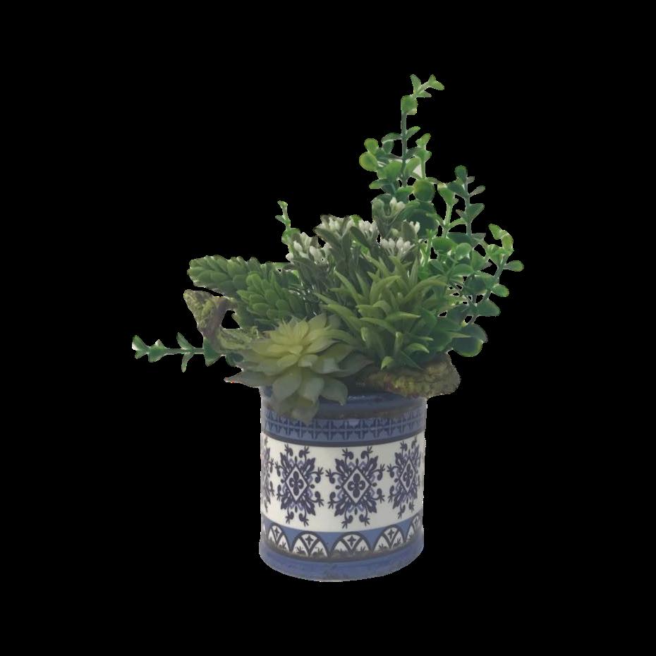 Arranjo Exclusivo com Suculentas e Vaso Azul