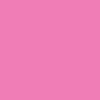 1016/17 - ROSA CHICLETE