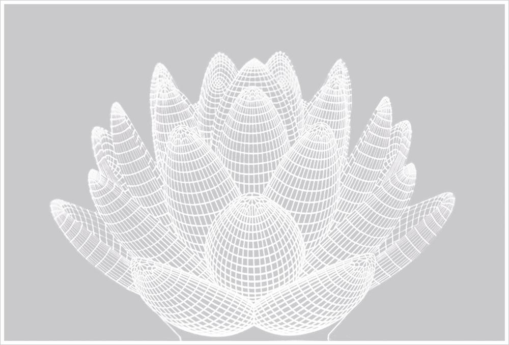 Abajur Em Acrílico Com Led  branco Flor De Lótus 3d
