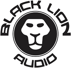 CONDICIONADOR DE ENERGIA BLACK LION AUDIO PG-1 TYPE F