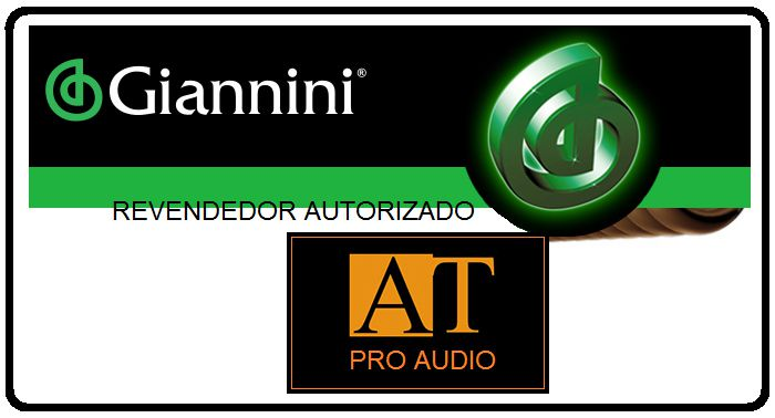 ENCORDOAMENTO P/GUITARRA 0.10 GIANNINI CANÁRIO GESGT10