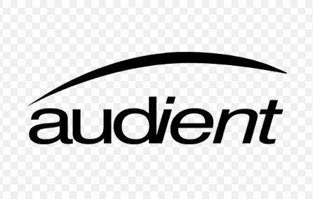 INTERFACE DE ÁUDIO USB AUDIENT ID14