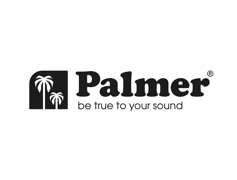 MONITOR CONTROL PASSIVO PALMER MONICON L