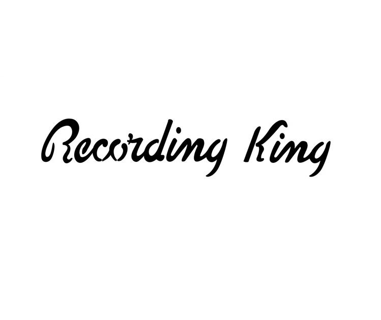RECORDING KING RR-41-VS RESSONATOR RATTLESNAKE