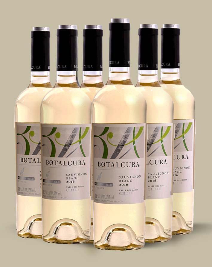 Kit El Delírio Sauvignon Blanc (6 und)