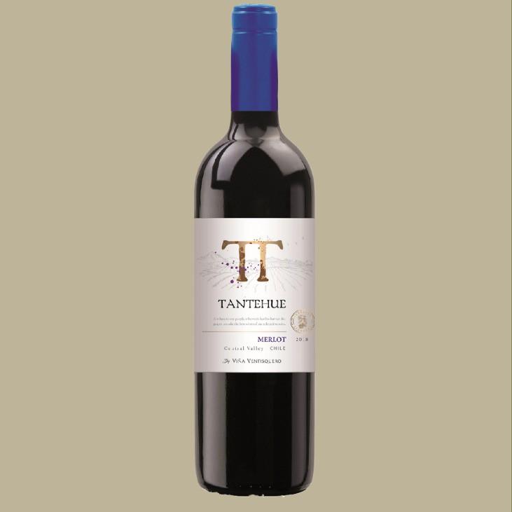 Vinho Viña Ventisquero Tantehue Merlot Chile 750 ml