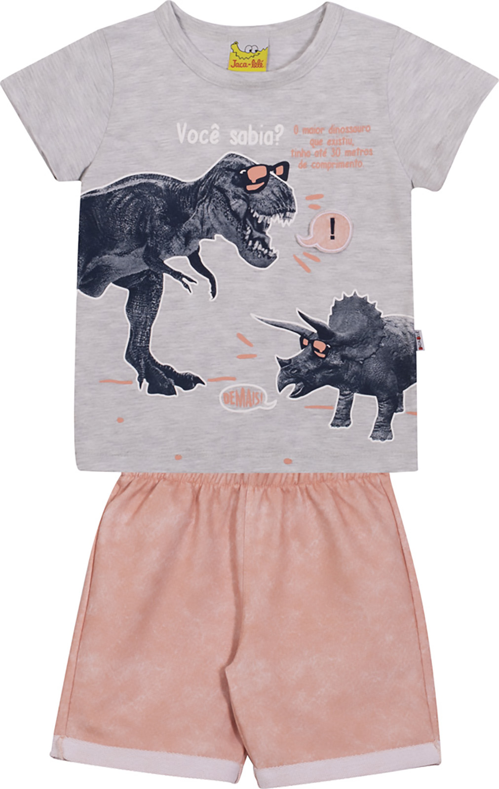 Conjunto Infantil Camiseta e Bermuda JACA-LELÉ Dinossauro Cinza e Salmão