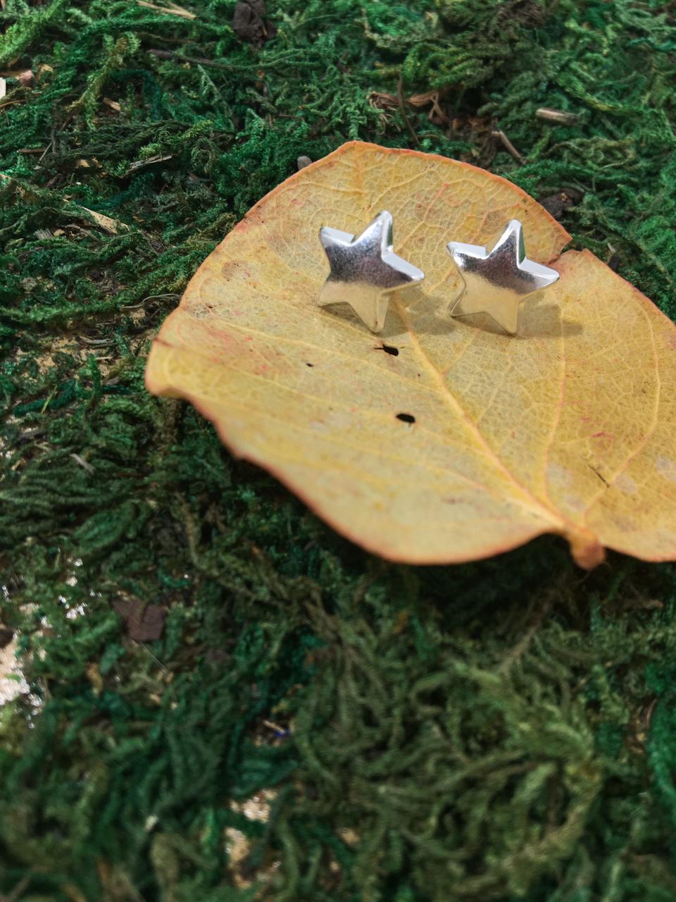 Brinco Estrela em Prata 925