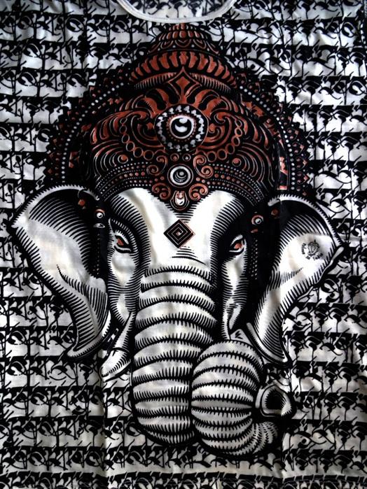 Camiseta Indiana Ganesha