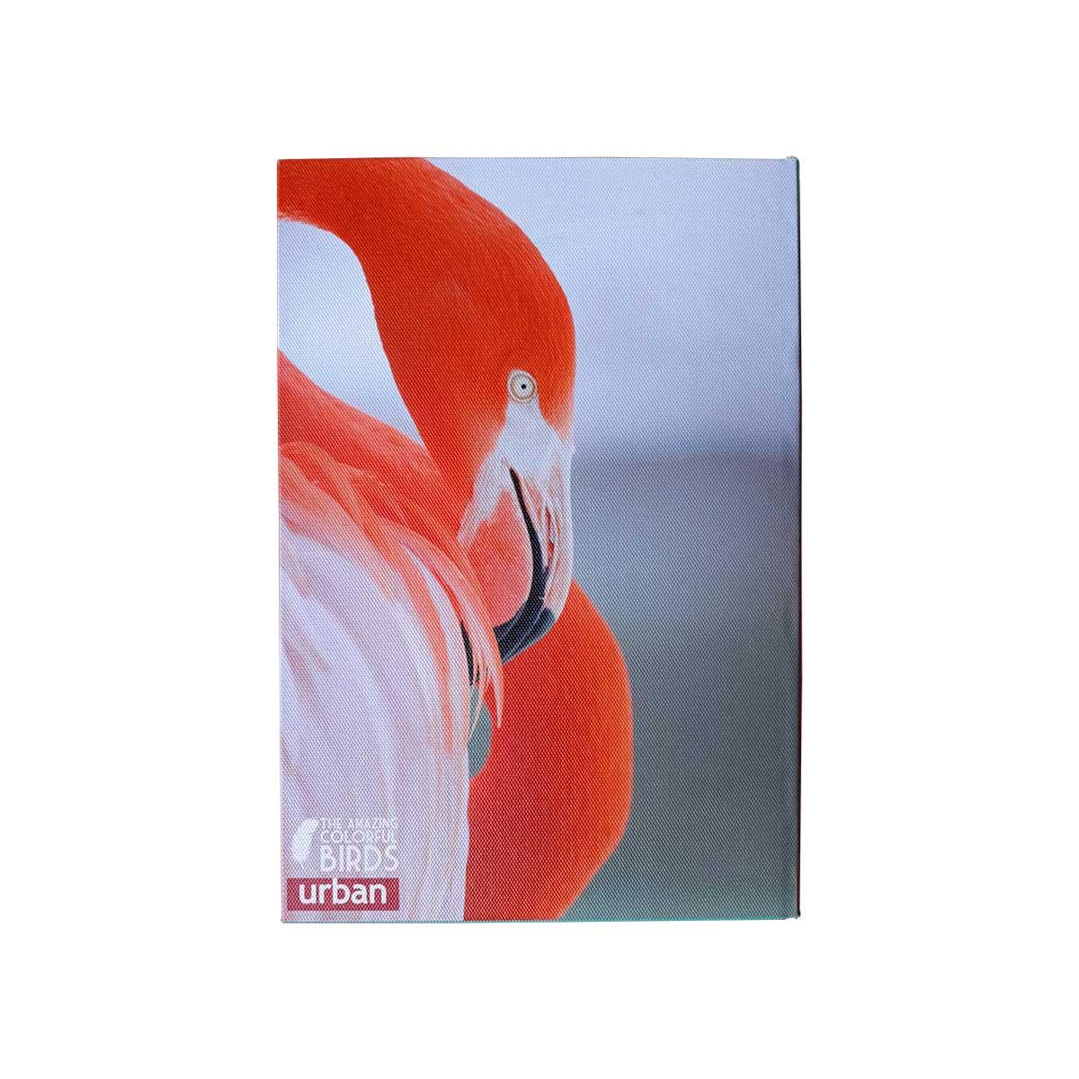 Caixa Livro Birds - 1 pç
