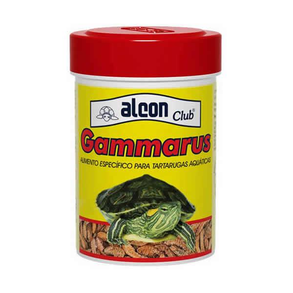 Alcon Gammarus