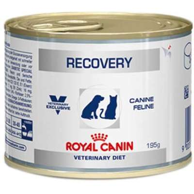 Ração Royal Canin Úmida Recovery Lata 195g