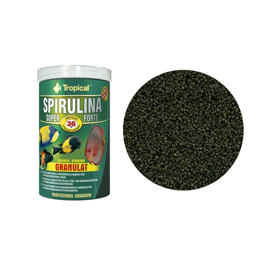 Ração Super Spirulina Forte Tropical
