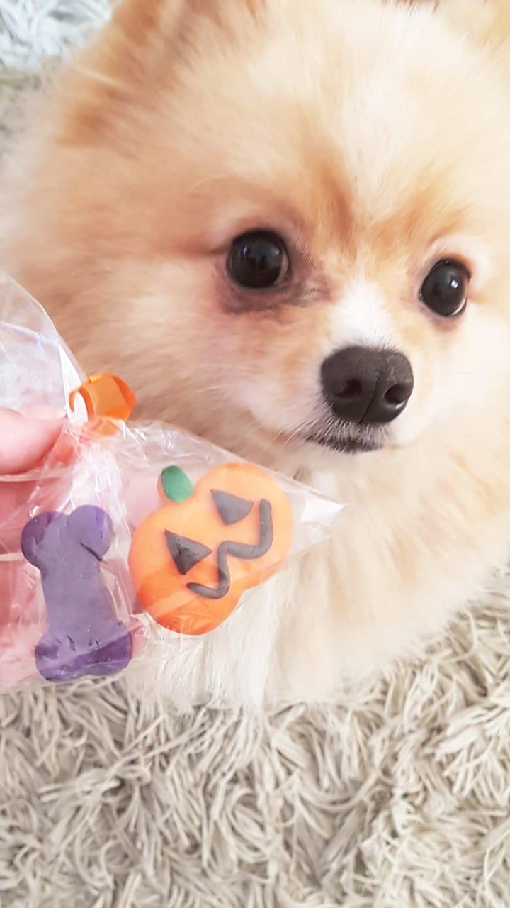 Biscoitos Halloween para Cães e Gatos - 6 Unidades