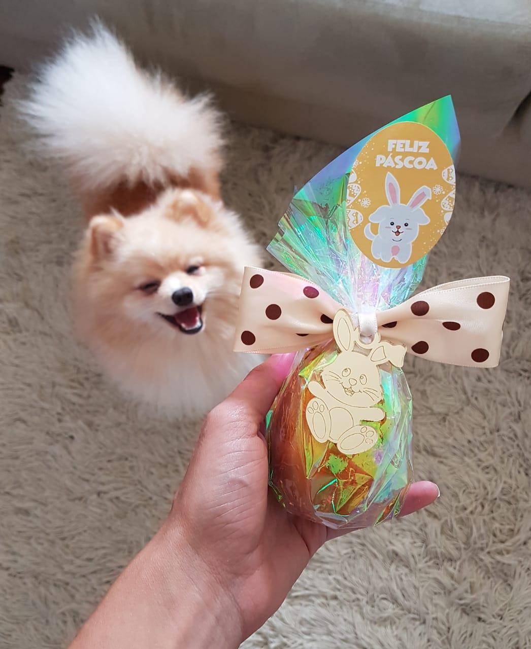 Ovo de Páscoa para Cães Surpresa