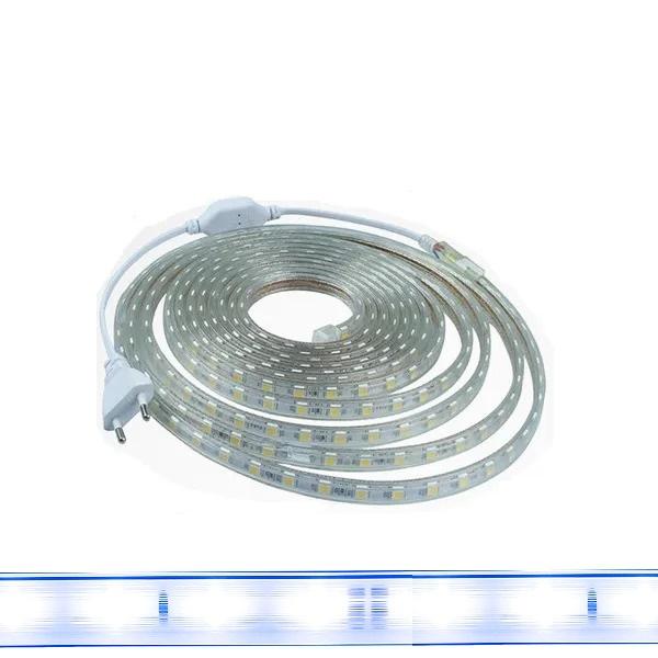 Fita Led 5050 Branco Frio 5 Metros  14w/m Com Conector 127v