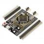 Arduino Mega 2560 Pro Mini (EMBED)