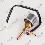 Válvula de Expansão Hitachi 17C87881A