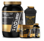 Combo 100% Whey Protein Pote 907g em pó Iron Fight + Creatine Explosion Pote 150g em pó Iron Fight  + BCAA 3:1:1 Pote 60 Cápsulas Iron Fight + Coqueteleira Iron Fight