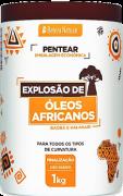 Creme de Pentear Explosão de Óleos Africanos 1kg Beleza Natural