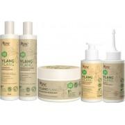 KIT 5 Produtos Ylang Ylang - Apse- 100% VEGANO