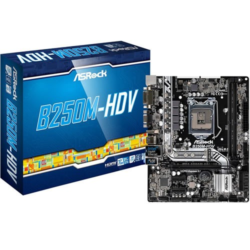 Placa Mãe 1151 Intel ASRock B250M-HDV DDR4 90-MXB3J0-A0UAYZ