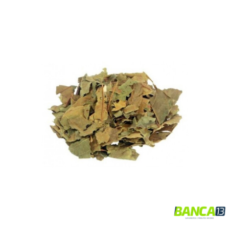 ABACATEIRO 50g