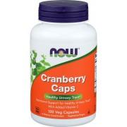 Cranberry Concentrado Com Vitamina C - NOW (100 Cápsulas Veganas)