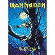 Pôster De Tecido LPGI 30' x 40' - Iron Maiden