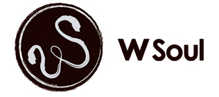 wsoulstore.com.br