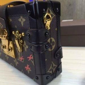 Bolsa Louis Vuitton Petit Malle