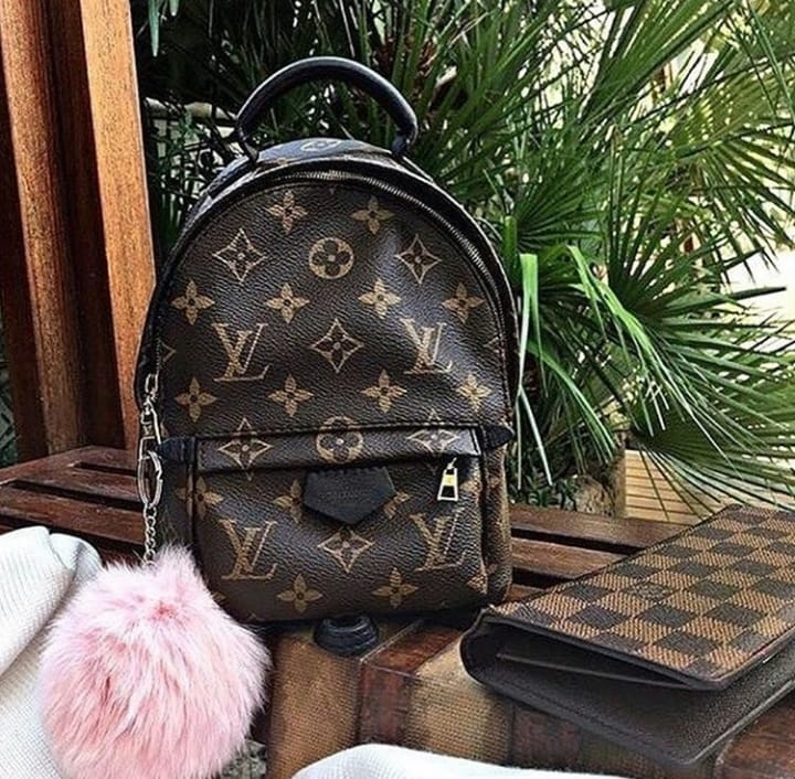 Mochila Louis Vuitton Palm Springs