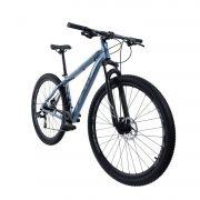 Bicicleta Tsw Ride Aro 29 Tamanho 19 Azul/cinza