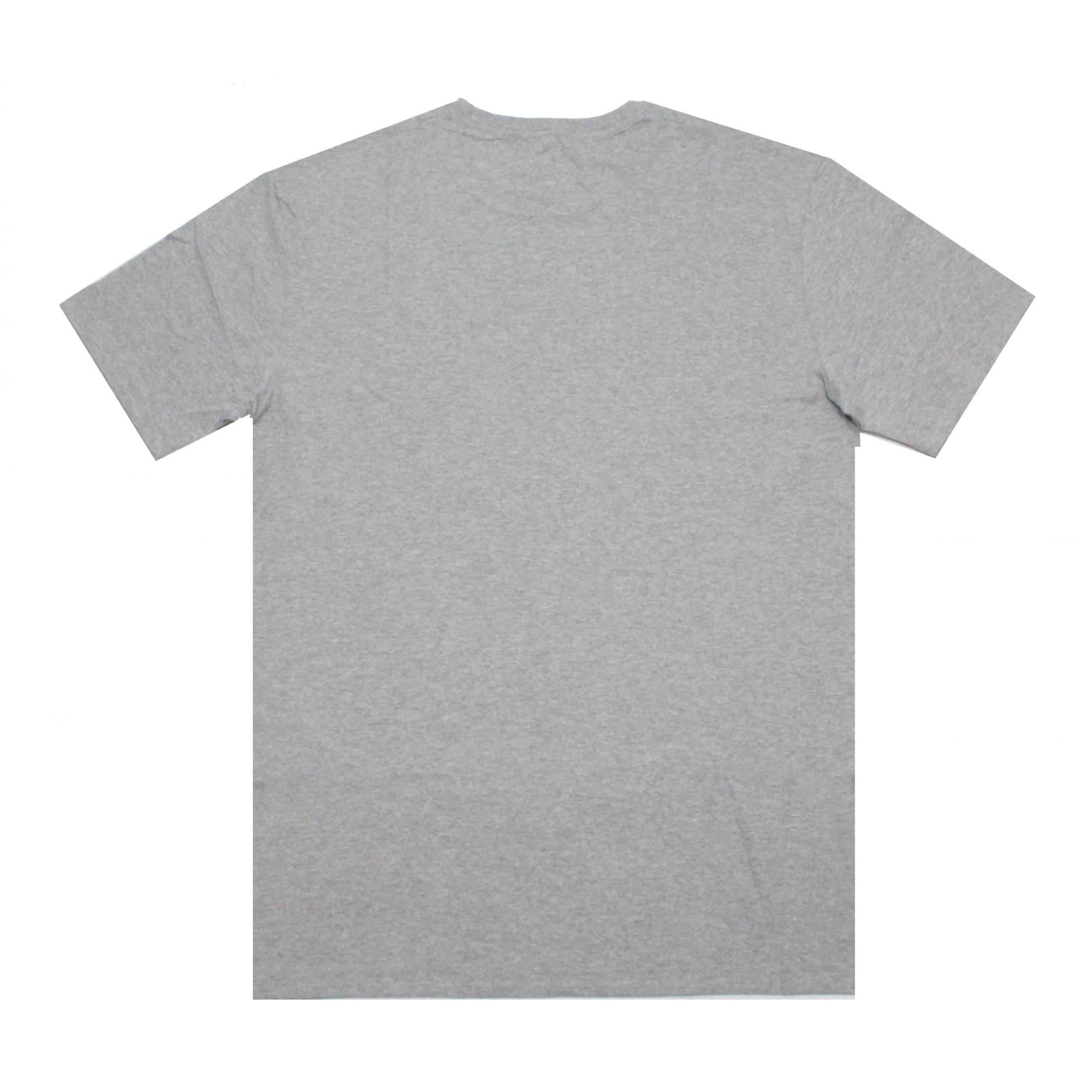 Camiseta Grizzly Lowercase Grey