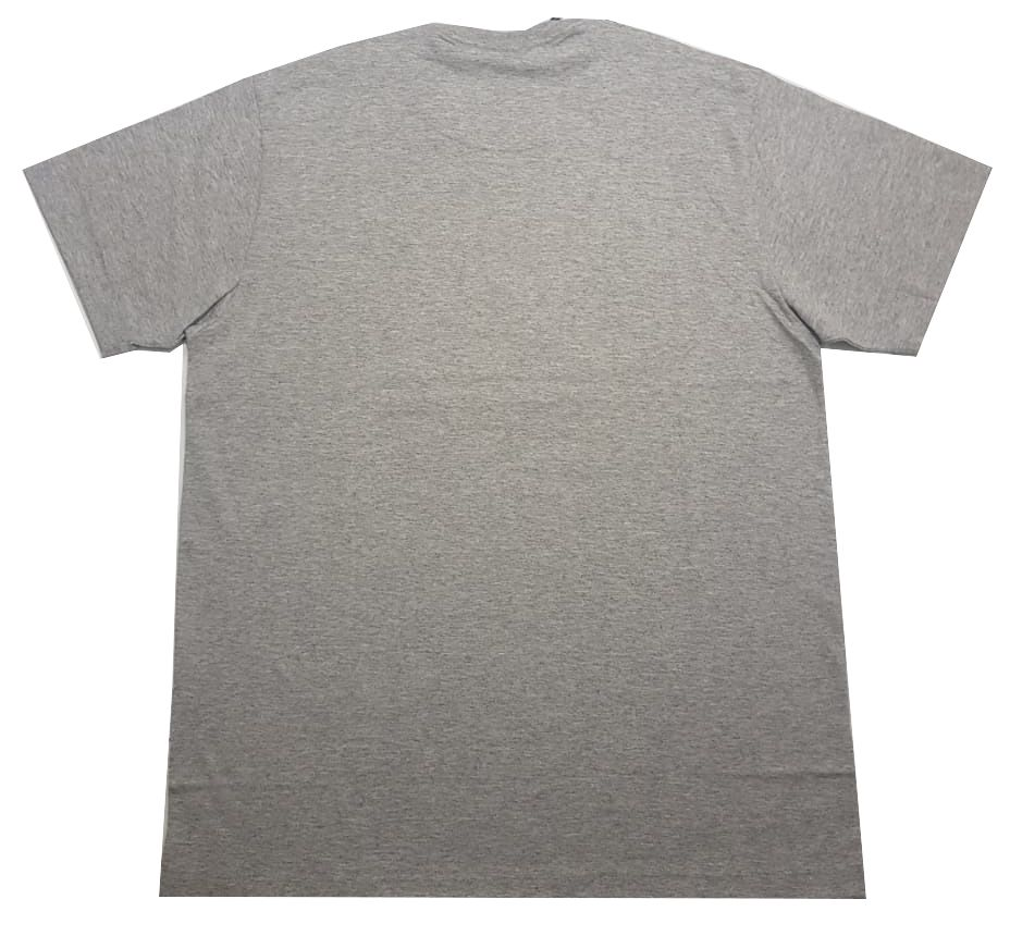 Camiseta Santa Cruz Classic Dot Grey