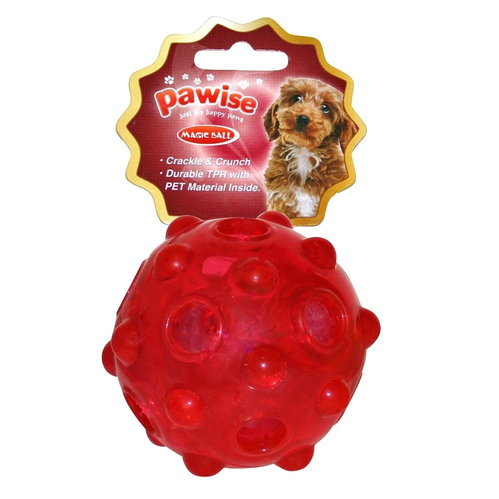 Brinquedo Bola Magic Ball - Pawise