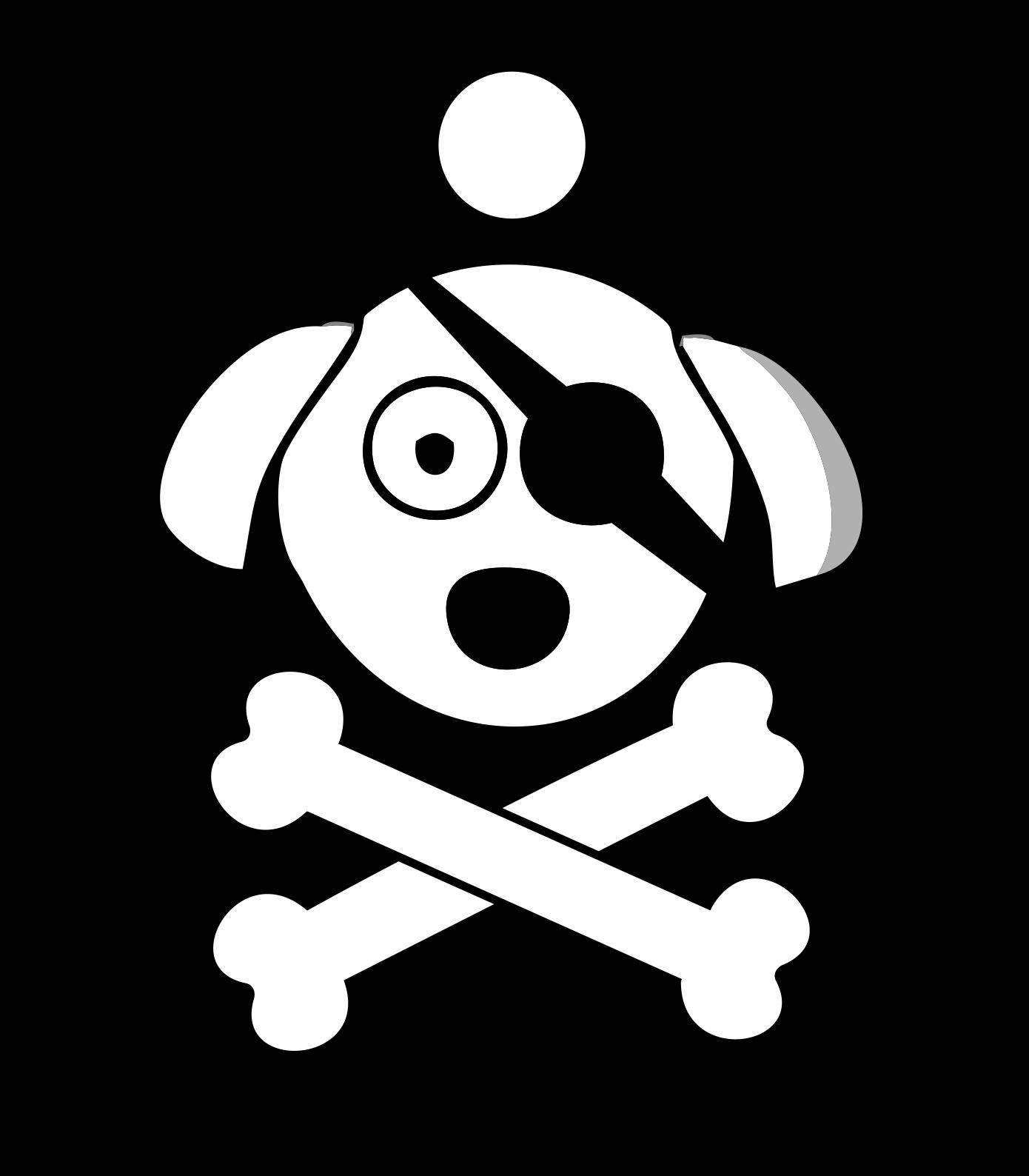 Placa de Identificação com Gravação Pirata P120014