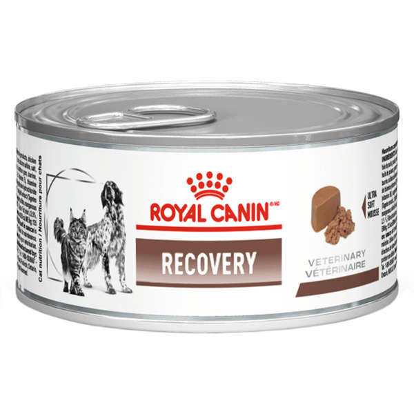 Royal Canin Veterinary Diet Lata Recovery